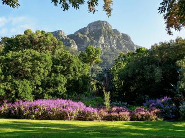 Kapstadt-BotanischerGarten-Kirstenbosch-small